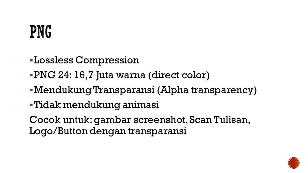 PNG Lossless Compression PNG 24: 16,7 Juta warna (direct color)