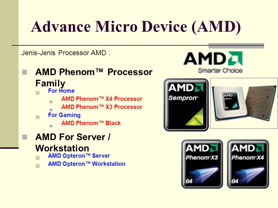 Advance Micro Device (AMD)