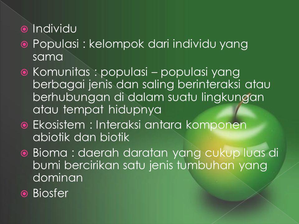 Individu Populasi : kelompok dari individu yang sama.