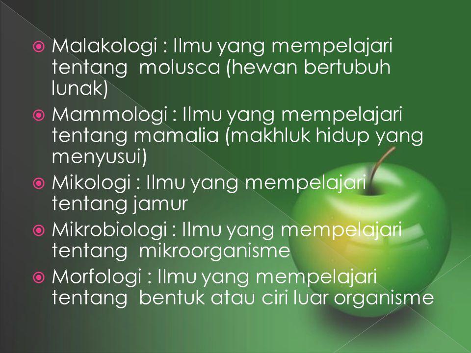 Malakologi : Ilmu yang mempelajari tentang molusca (hewan bertubuh lunak)