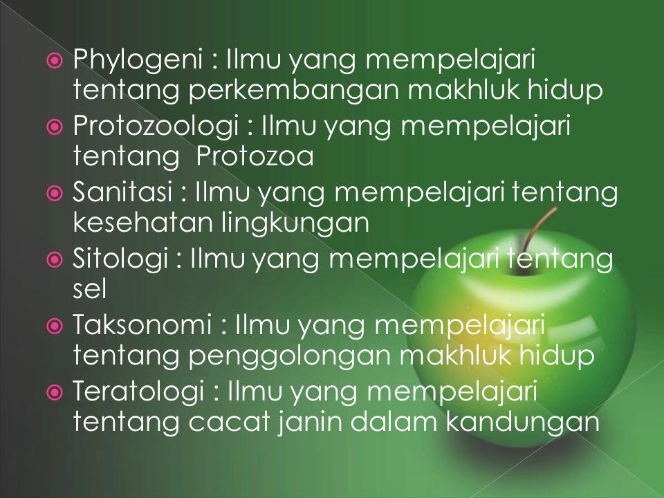 Phylogeni : Ilmu yang mempelajari tentang perkembangan makhluk hidup