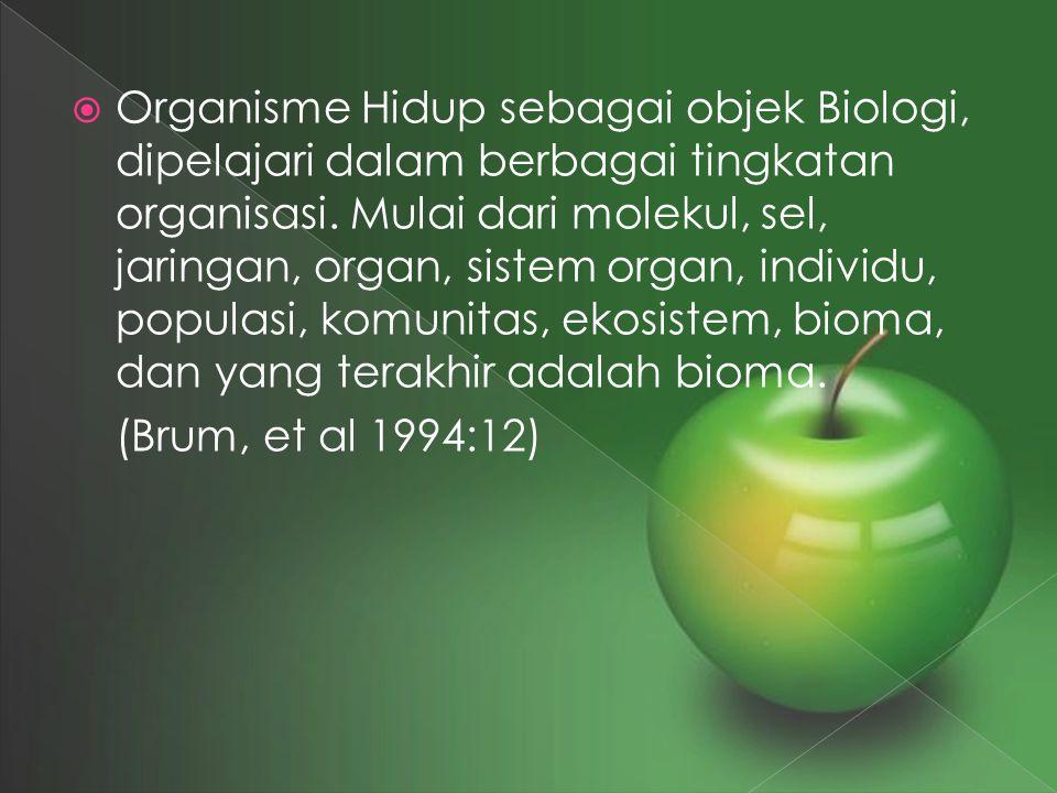 Organisme Hidup sebagai objek Biologi, dipelajari dalam berbagai tingkatan organisasi. Mulai dari molekul, sel, jaringan, organ, sistem organ, individu, populasi, komunitas, ekosistem, bioma, dan yang terakhir adalah bioma.