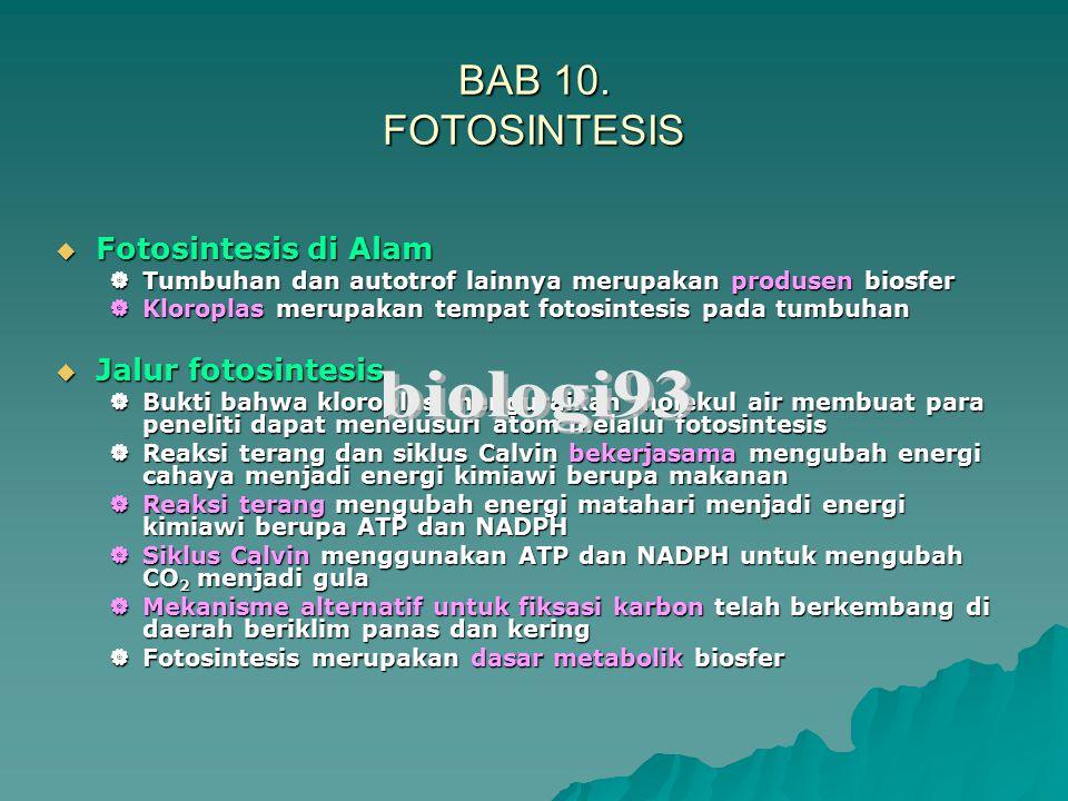 biologi93 BAB 10. FOTOSINTESIS Fotosintesis di Alam Jalur fotosintesis