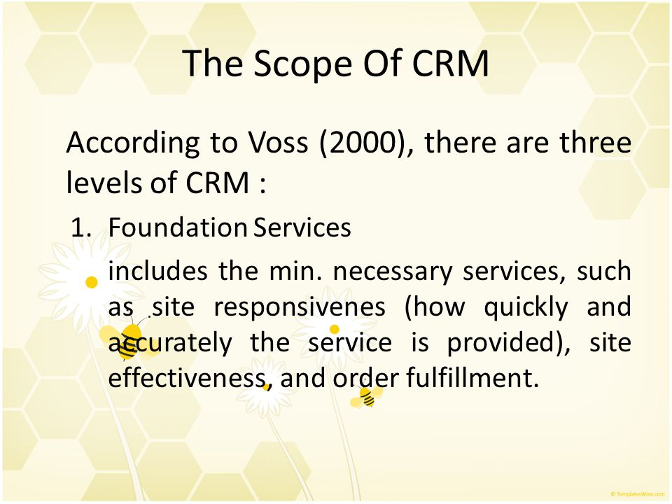 The Scope Of CRM According to Voss (2000), there are three levels of CRM : Foundation Services.