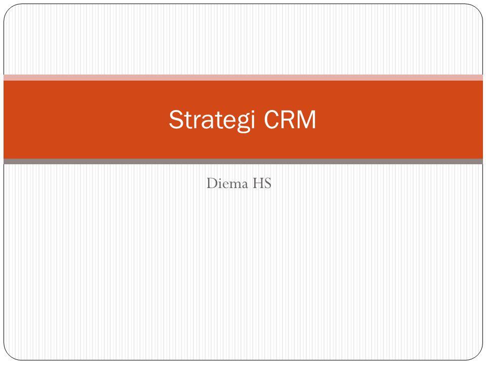 Strategi CRM Diema HS
