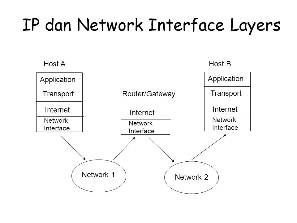 IP dan Network Interface Layers