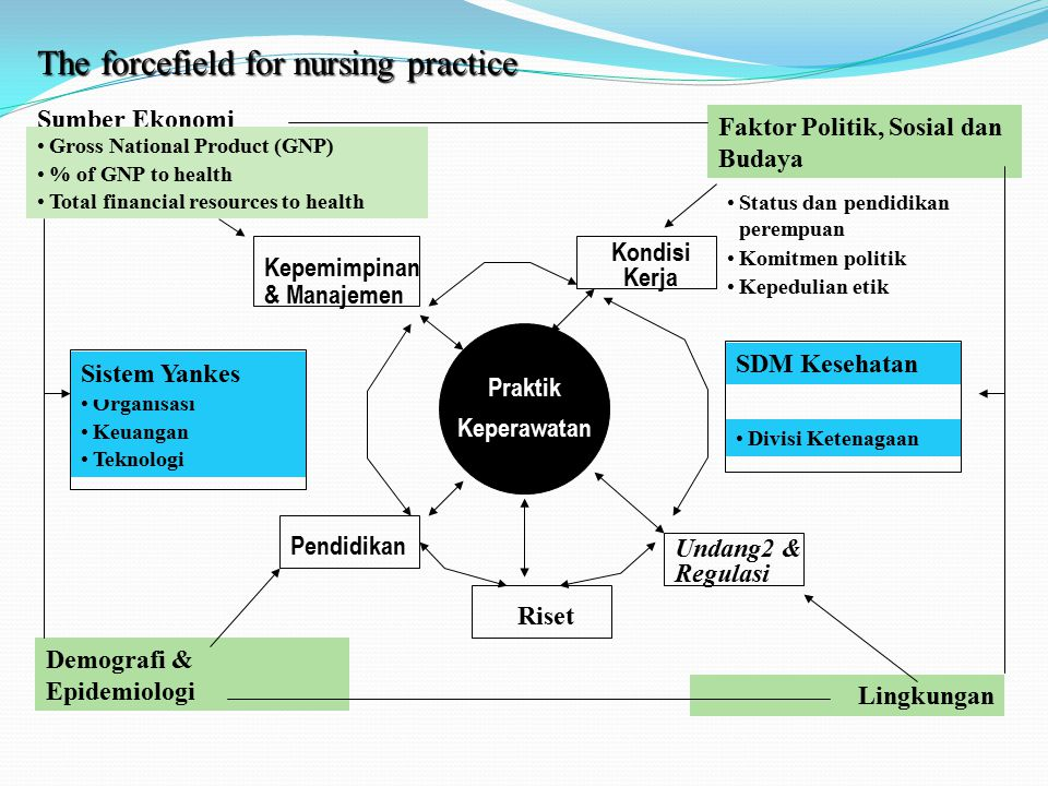 The forcefield for nursing practice