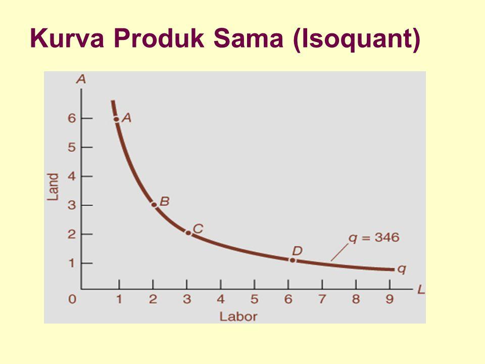 Kurva Produk Sama (Isoquant)