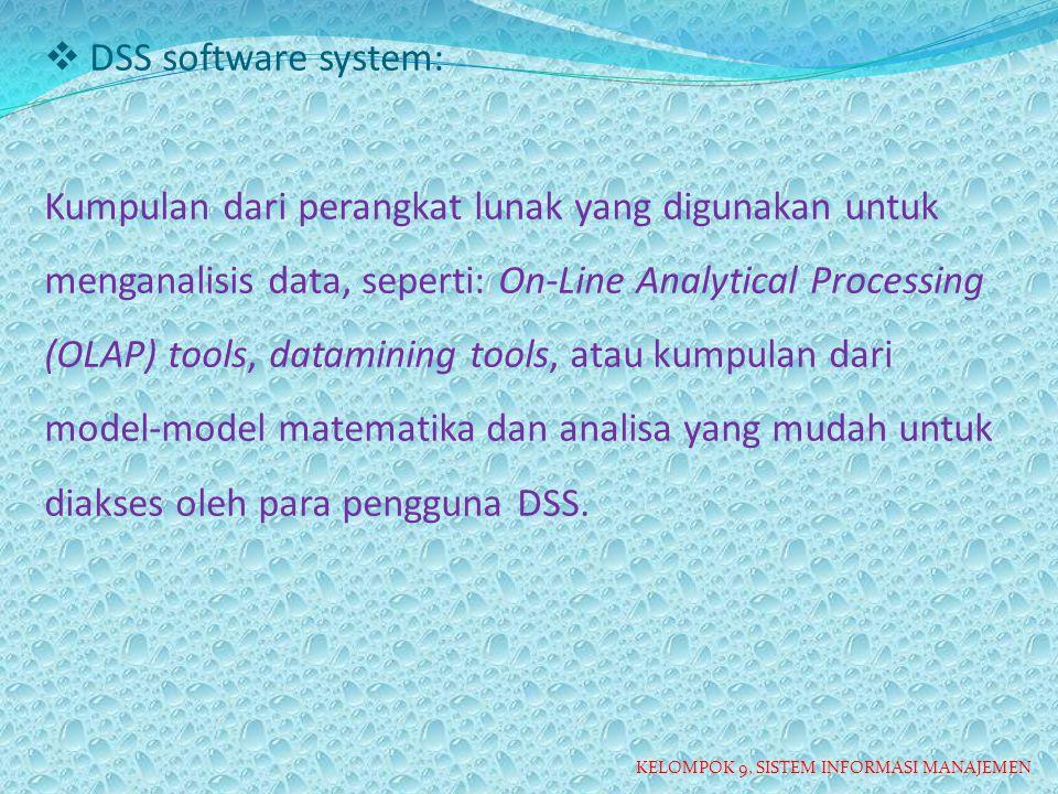 DSS software system: Kumpulan dari perangkat lunak yang digunakan untuk menganalisis data, seperti: On-Line Analytical Processing (OLAP) tools, datamining tools, atau kumpulan dari model-model matematika dan analisa yang mudah untuk diakses oleh para pengguna DSS.