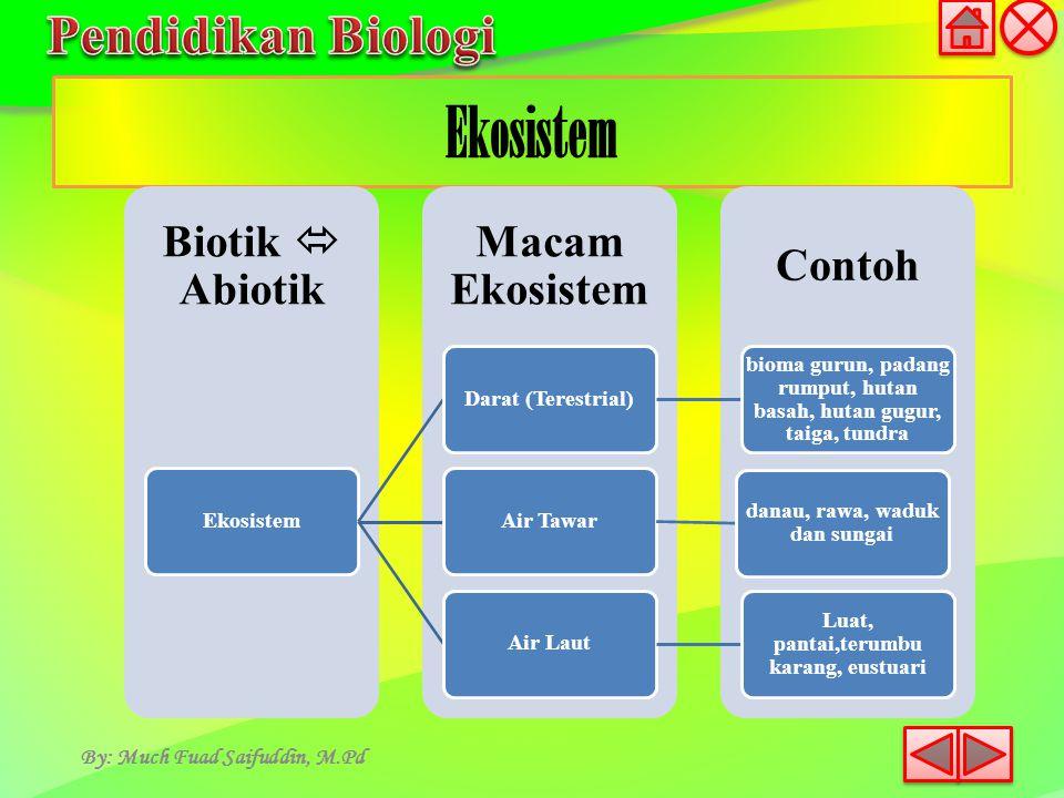Ekosistem By: Much Fuad Saifuddin, M.Pd Ekosistem Darat (Terestrial)