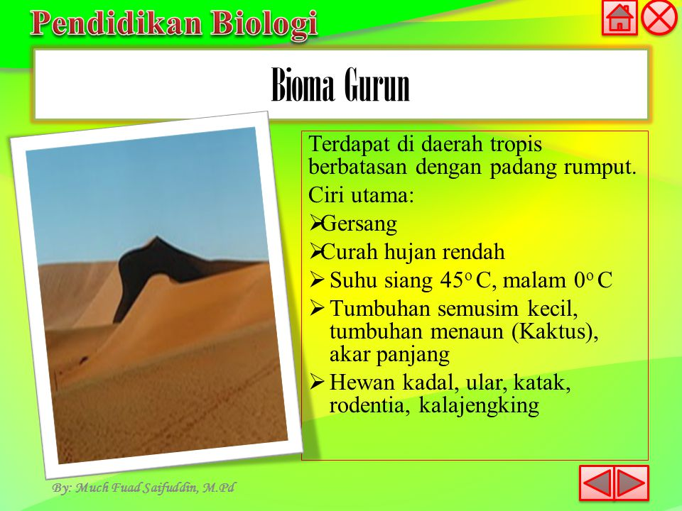 By: Much Fuad Saifuddin, M.Pd