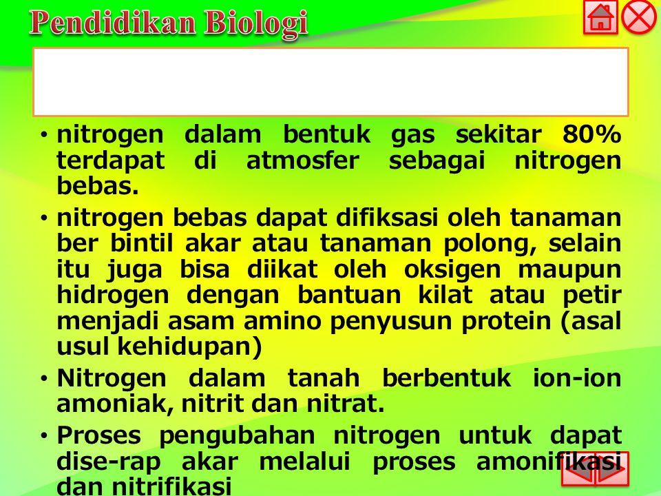 nitrogen dalam bentuk gas sekitar 80% terdapat di atmosfer sebagai nitrogen bebas.