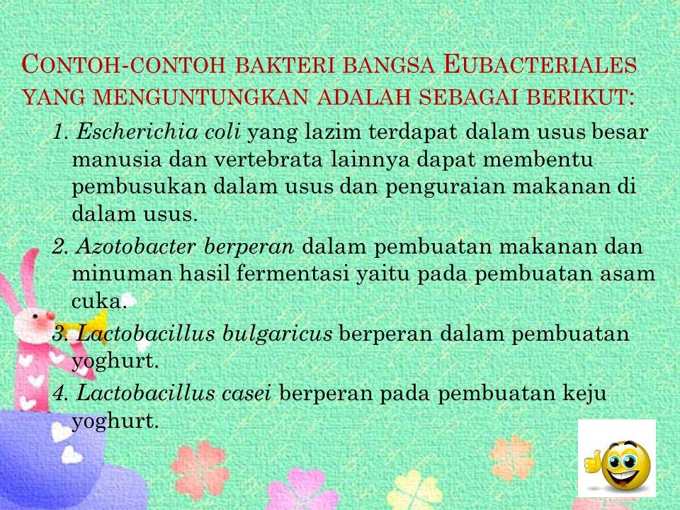 Contoh-contoh bakteri bangsa Eubacteriales yang menguntungkan adalah sebagai berikut: