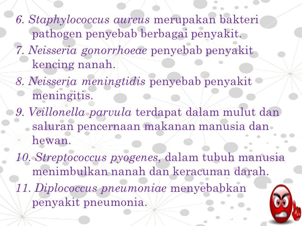 6. Staphylococcus aureus merupakan bakteri pathogen penyebab berbagai penyakit.