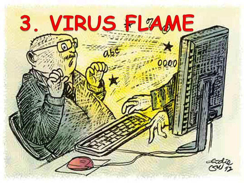 3. VIRUS FLAME