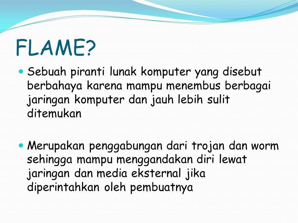 FLAME Sebuah piranti lunak komputer yang disebut berbahaya karena mampu menembus berbagai jaringan komputer dan jauh lebih sulit ditemukan.