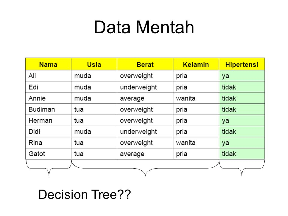Data Mentah Decision Tree
