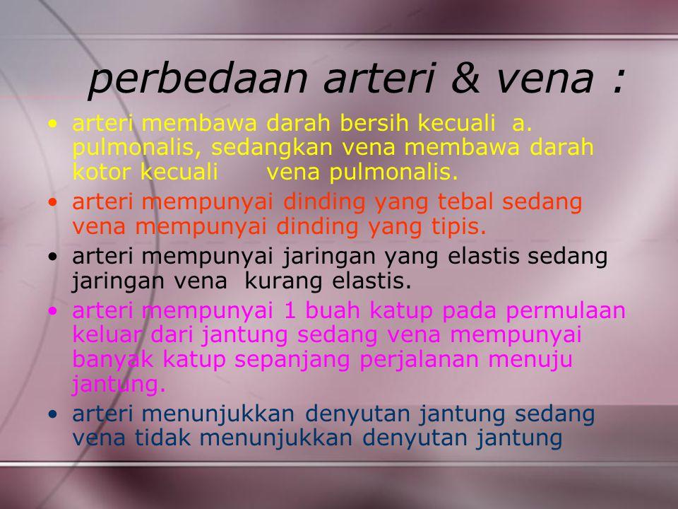 perbedaan arteri & vena :
