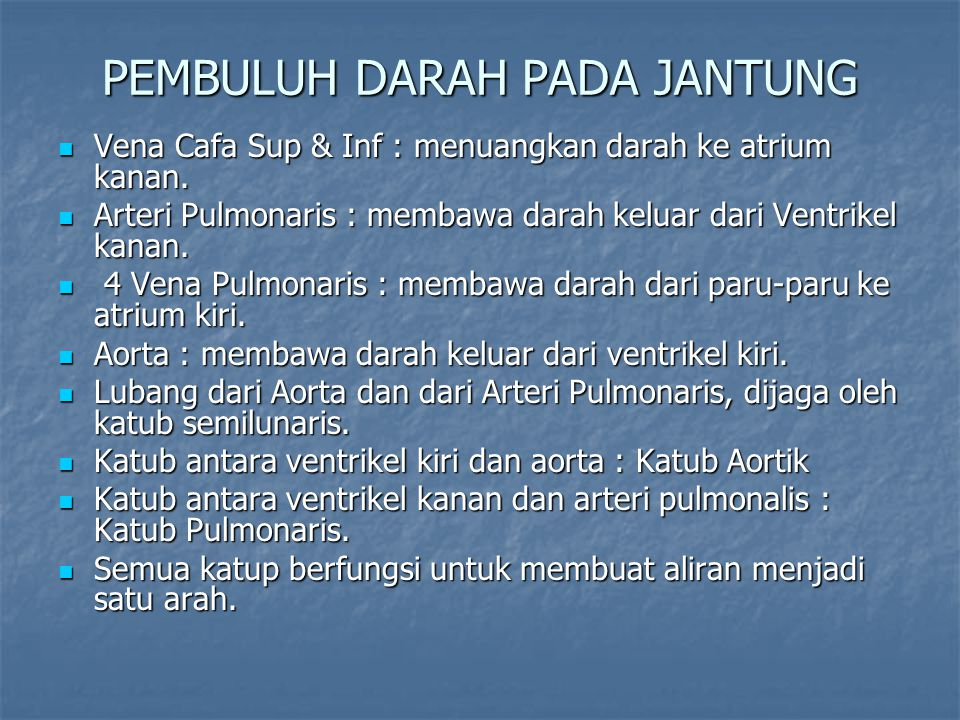 PEMBULUH DARAH PADA JANTUNG