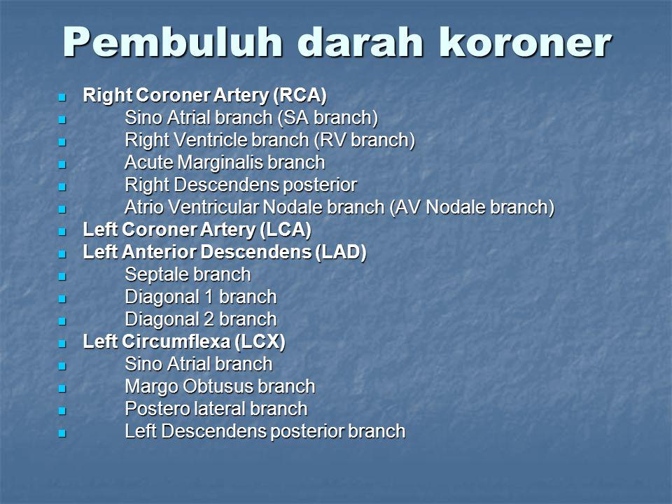Pembuluh darah koroner