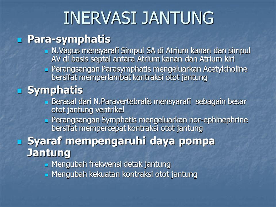 INERVASI JANTUNG Para-symphatis Symphatis