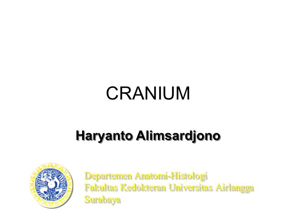 Haryanto Alimsardjono