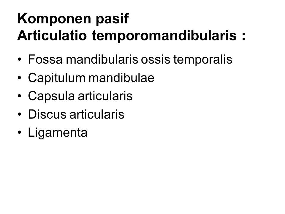 Komponen pasif Articulatio temporomandibularis :