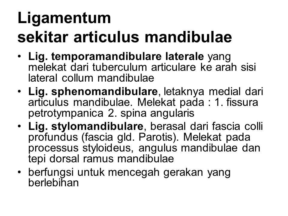 Ligamentum sekitar articulus mandibulae
