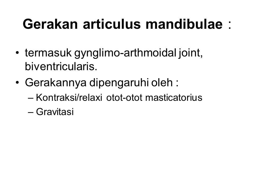 Gerakan articulus mandibulae :