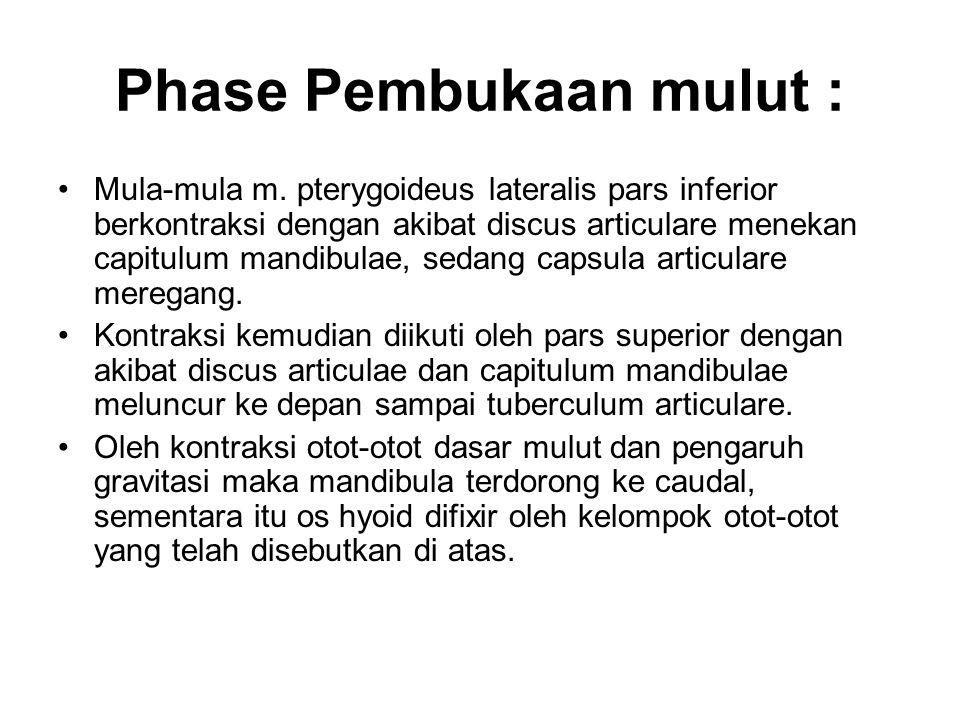 Phase Pembukaan mulut :