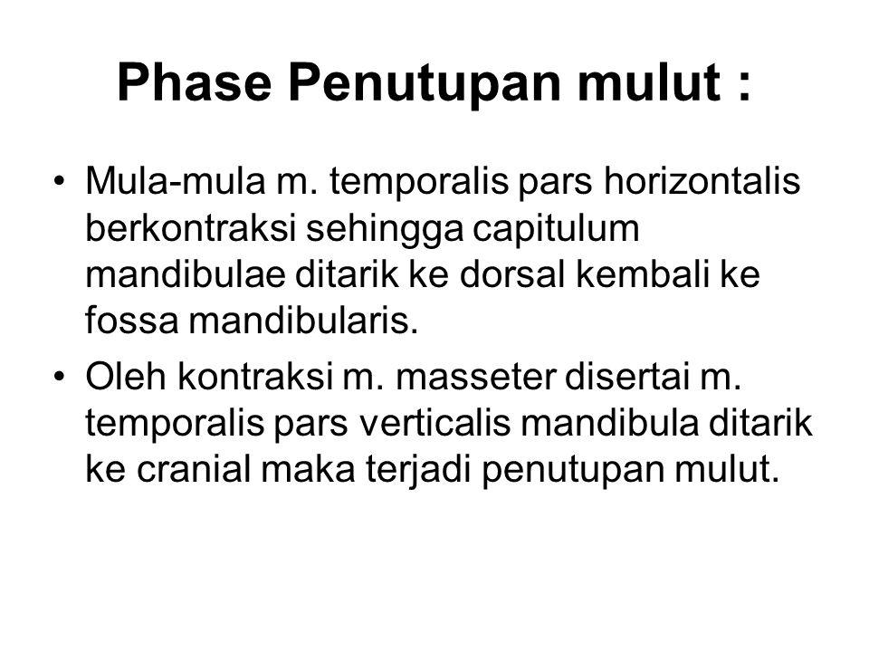 Phase Penutupan mulut :