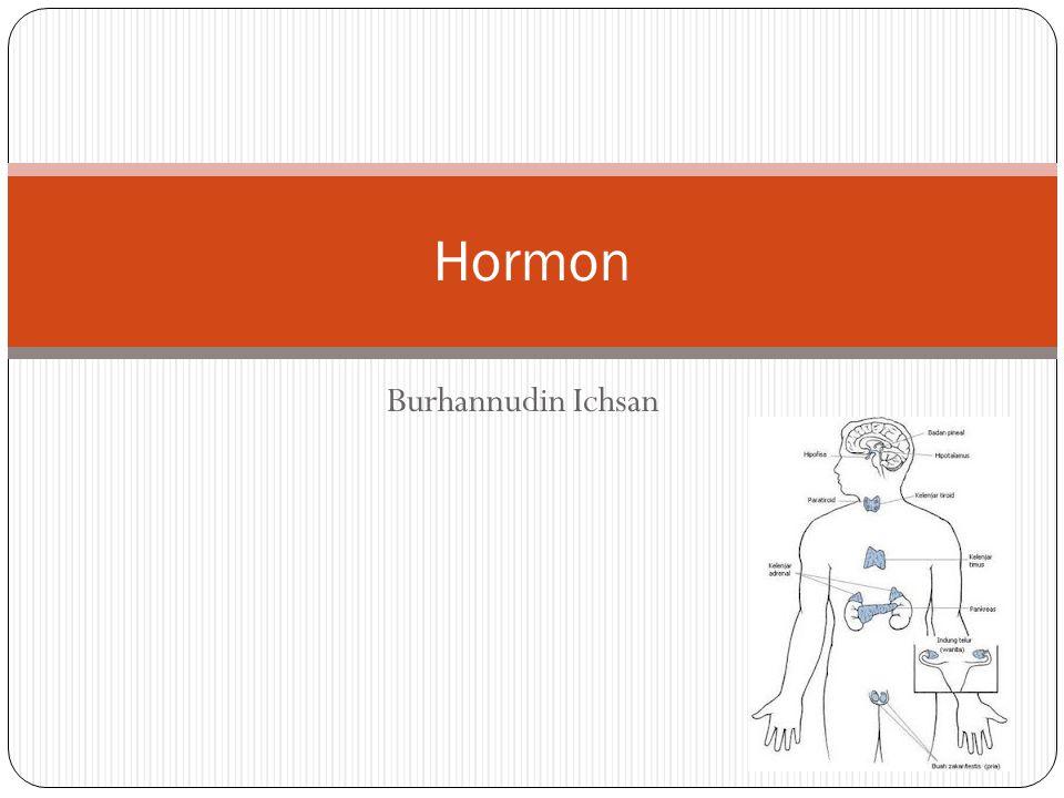 Hormon Burhannudin Ichsan