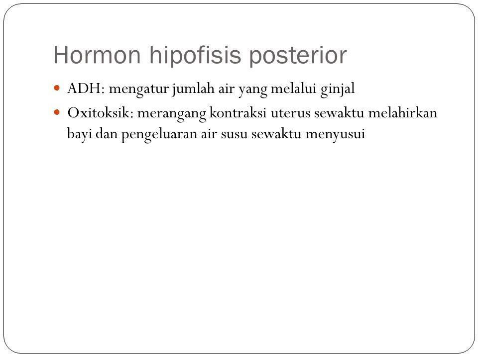 Hormon hipofisis posterior