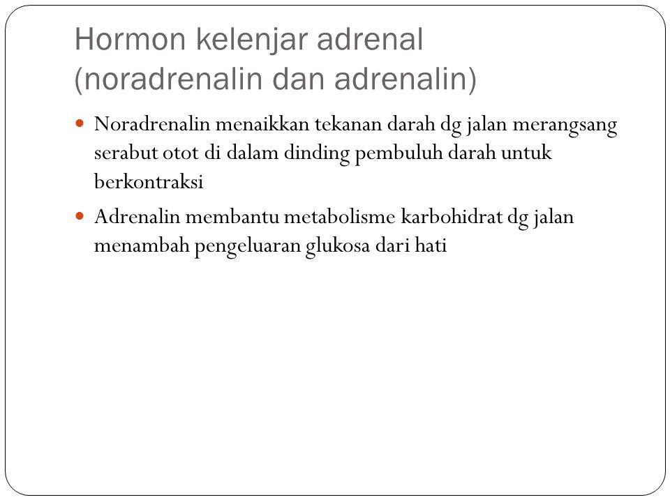 Hormon kelenjar adrenal (noradrenalin dan adrenalin)