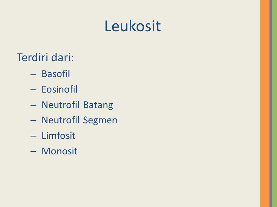 Leukosit Terdiri dari: Basofil Eosinofil Neutrofil Batang