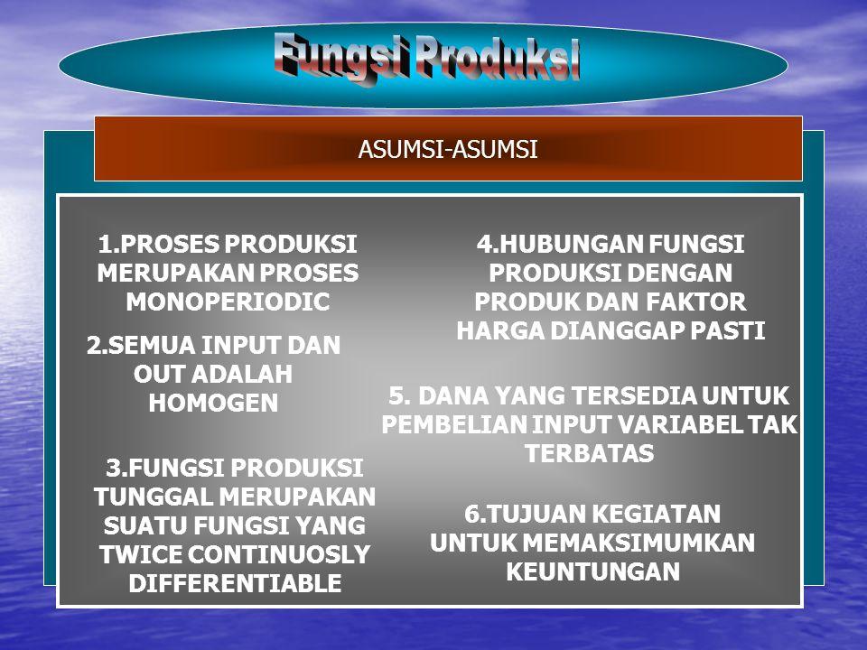 Fungsi Produksi ASUMSI-ASUMSI