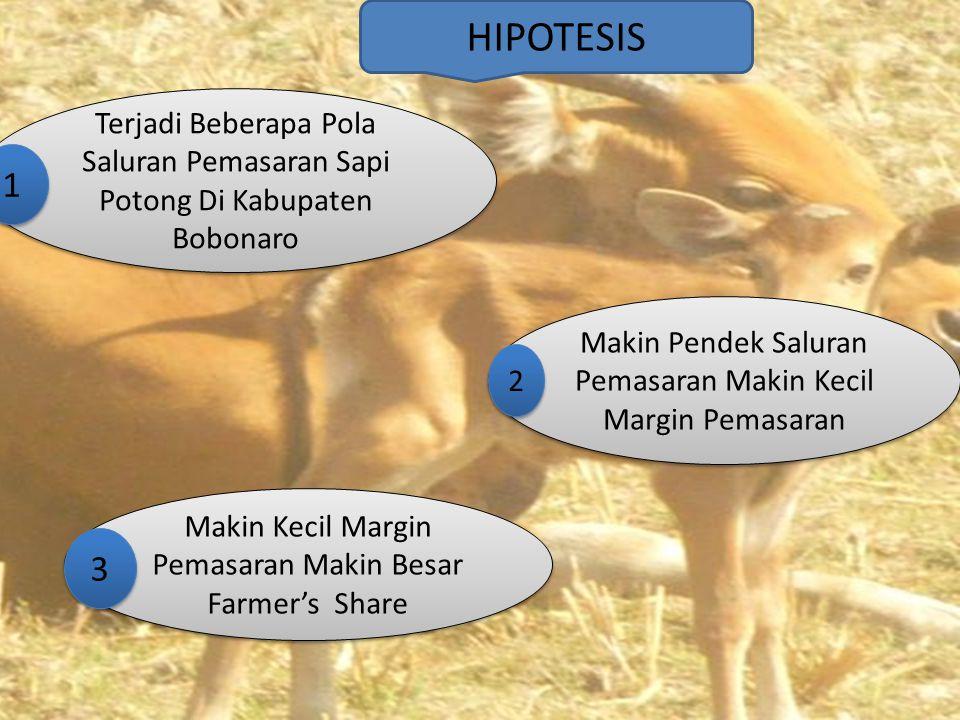 HIPOTESIS Terjadi Beberapa Pola Saluran Pemasaran Sapi Potong Di Kabupaten Bobonaro. 1. Makin Pendek Saluran Pemasaran Makin Kecil Margin Pemasaran.