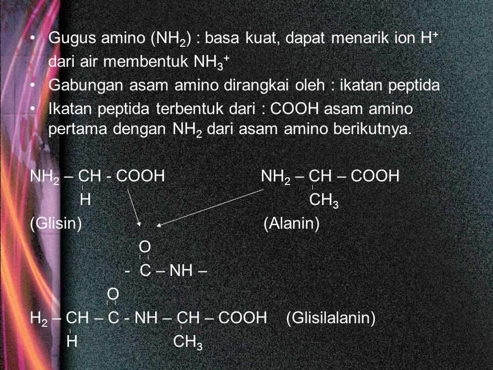 Gugus amino (NH2) : basa kuat, dapat menarik ion H+