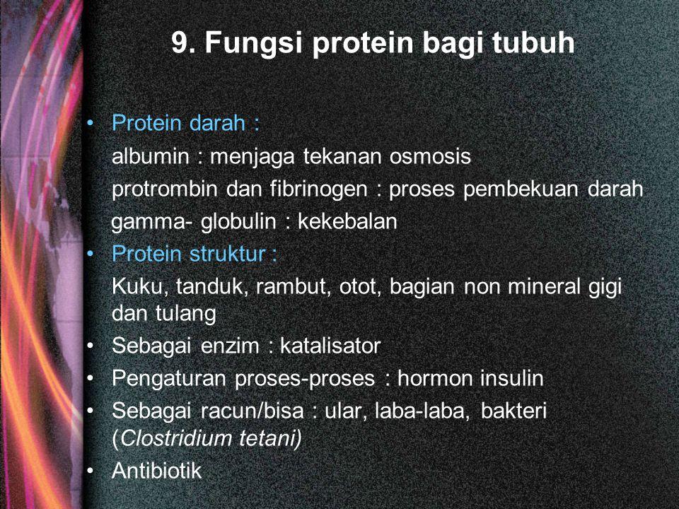 9. Fungsi protein bagi tubuh