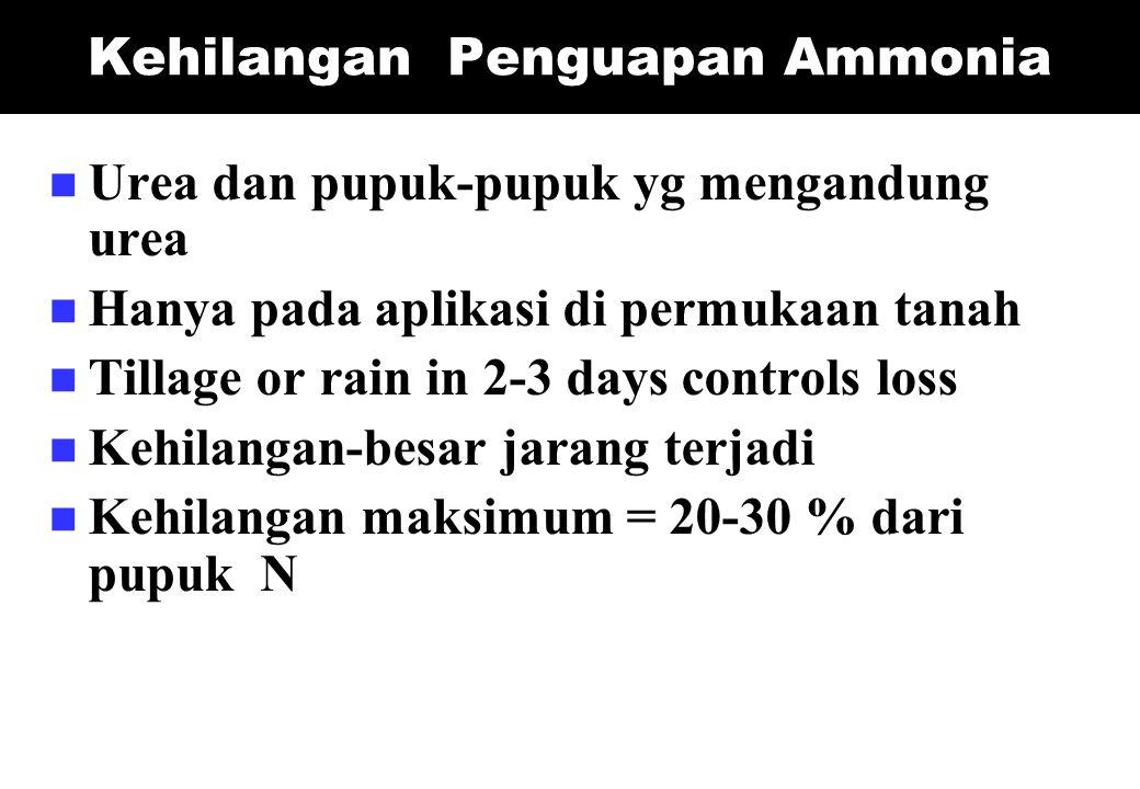 Kehilangan Penguapan Ammonia
