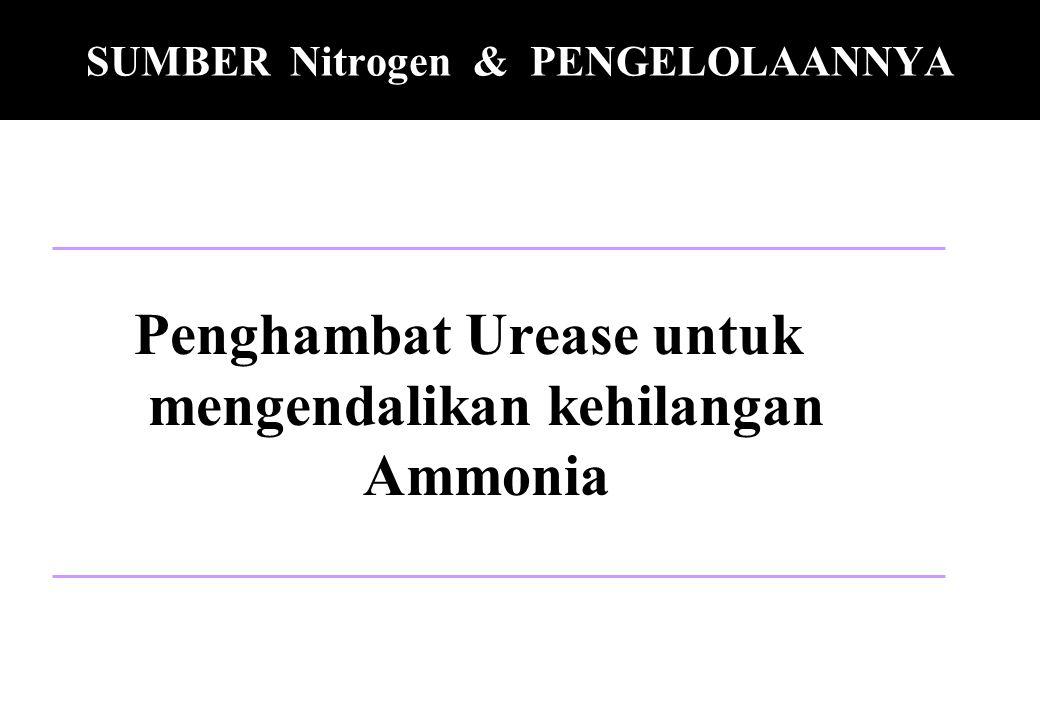 SUMBER Nitrogen & PENGELOLAANNYA