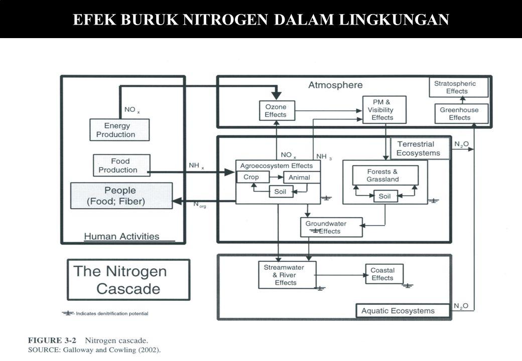 EFEK BURUK NITROGEN DALAM LINGKUNGAN