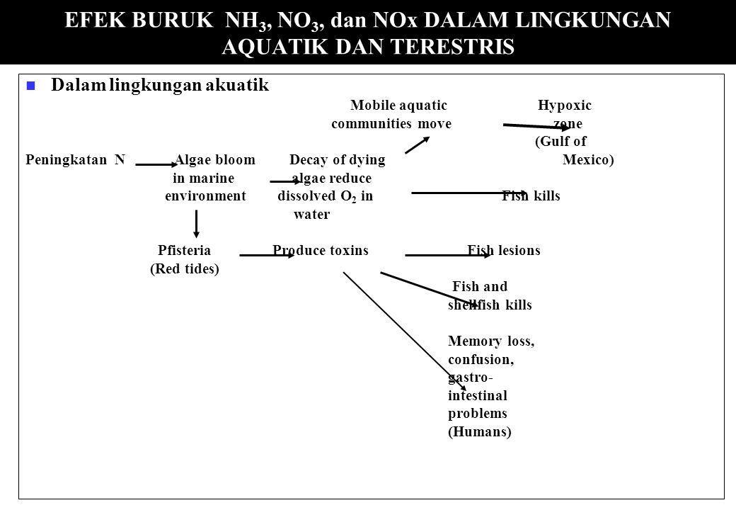 EFEK BURUK NH3, NO3, dan NOx DALAM LINGKUNGAN AQUATIK DAN TERESTRIS