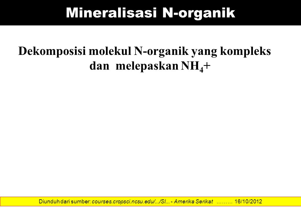 Mineralisasi N-organik