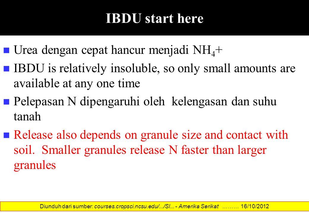 IBDU start here Urea dengan cepat hancur menjadi NH4+
