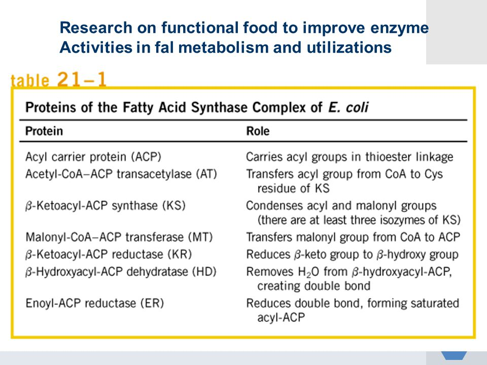 Research on functional food to improve enzyme