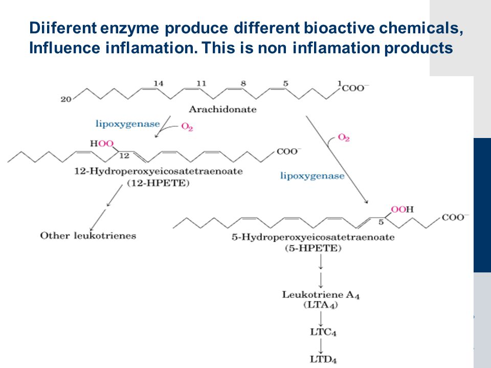 Diiferent enzyme produce different bioactive chemicals,