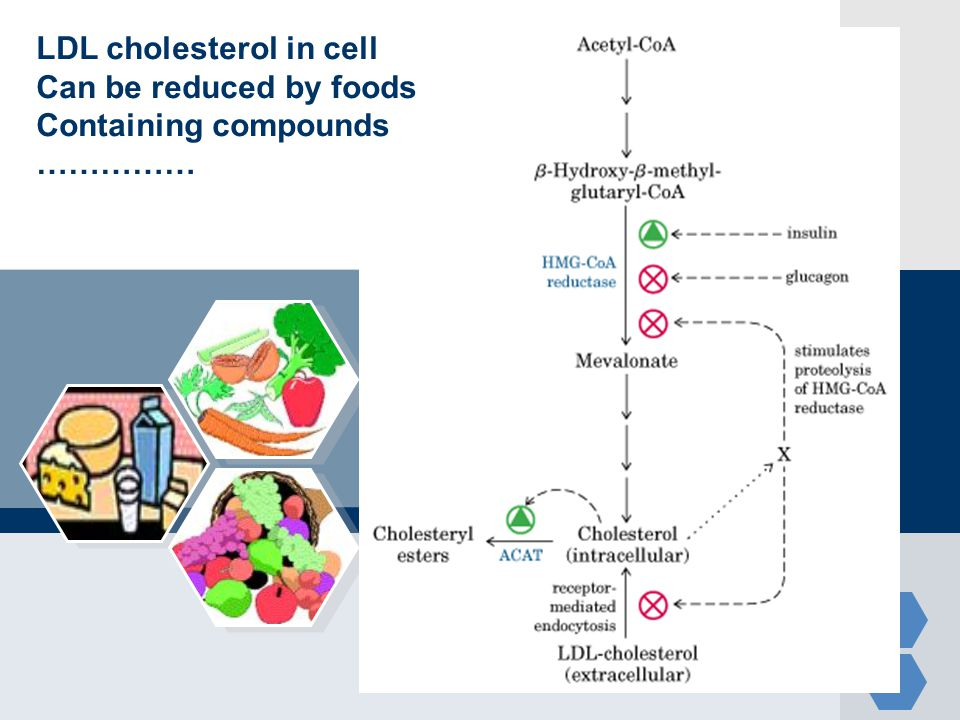 LDL cholesterol in cell
