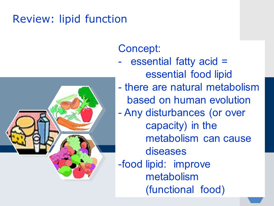 Review: lipid function