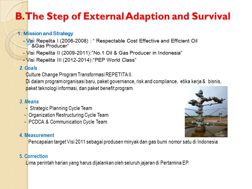 B. The Step of External Adaption and Survival